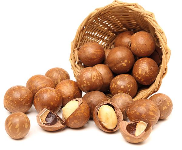 Ăn hạt macca mỗi ngày rất tốt cho phụ nữ mang thai và trẻ em